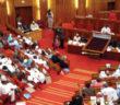 Senate of the Federal Republic
