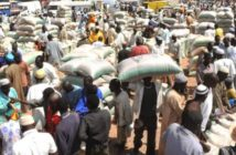 GRAINS MARKET AT KAFIN MADAKI DISTRICT IN GANJUWA