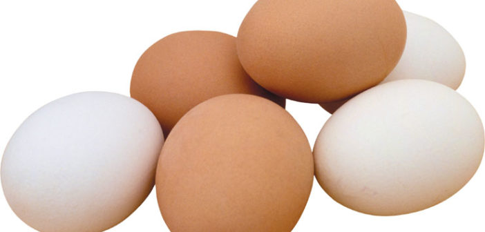 eggs..2