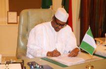 Buhari in office 2