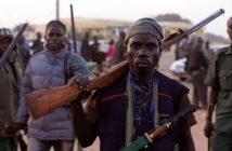 Nigerian Vigilante