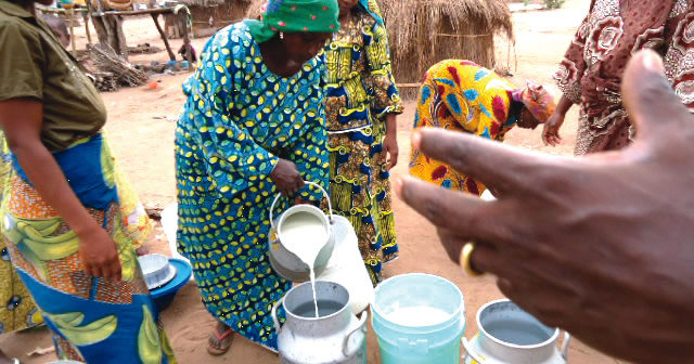 Women-filtering-fresh-cow-milk