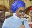 Sadiya Farouk Minister