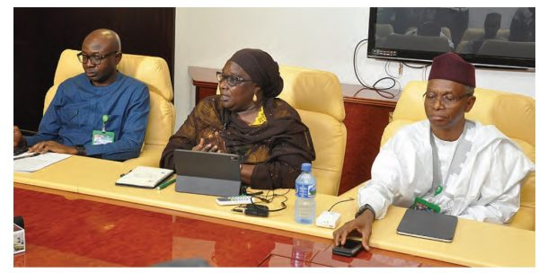 Muyiwa, Hadiza and El-Rufai